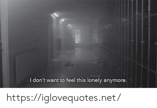 Net, Href, and This: I don't want to feel this lonely anymore. https://iglovequotes.net/
