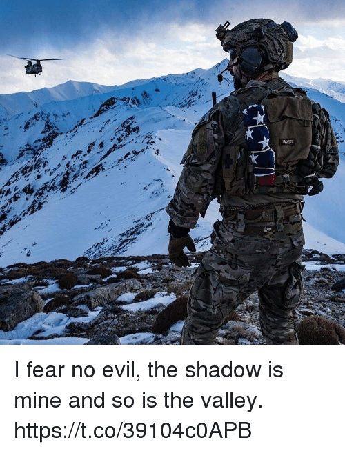 Memes, Evil, and Fear: I fear no evil, the shadow is mine and so is the valley. https://t.co/39104c0APB