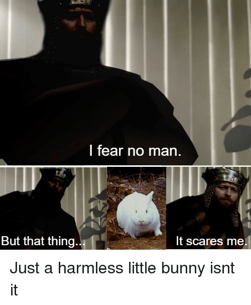 Fear, Bunny, and Man: I fear no man.  But that thing  It scares me. Just a harmless little bunny isnt it
