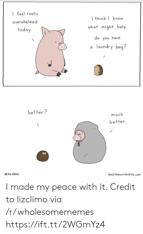 Liz Climo: I feel really  I think| know  overwhelmed  what might help.  today.  do you have  laundry bag?  a  better?  much  better.  O liz climo  thelittleworld ofliz.com I made my peace with it. Credit to lizclimo via /r/wholesomememes https://ift.tt/2WGmYz4