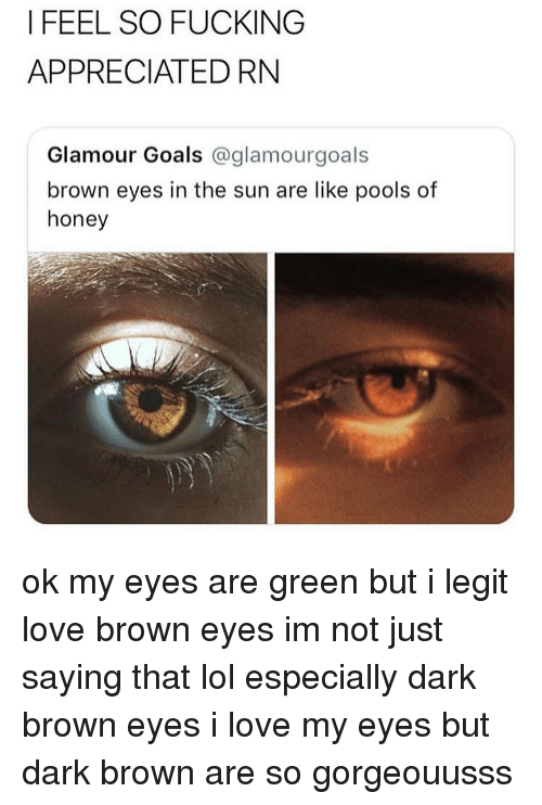 Fucking, Goals, and Lol: I FEEL SO FUCKING  APPRECIATED RN  Glamour Goals @glamourgoals  brown eyes in the sun are like pools of  honey ok my eyes are green but i legit love brown eyes im not just saying that lol especially dark brown eyes i love my eyes but dark brown are so gorgeouusss