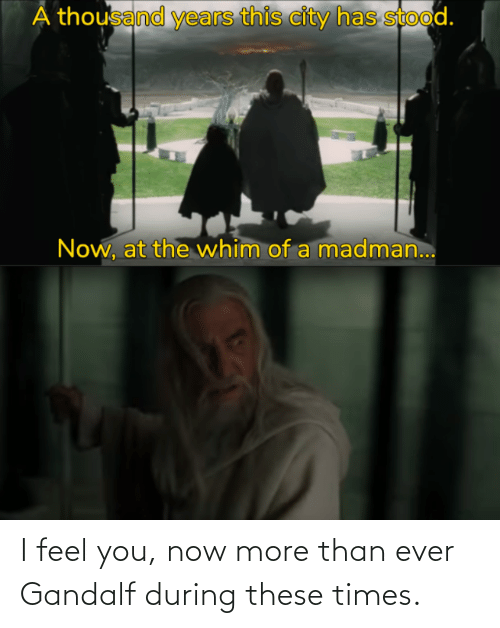 You Now: I feel you, now more than ever Gandalf during these times.