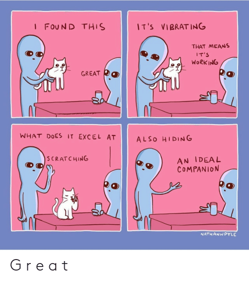 Excel, What Does, and Ing: I FOUND THIS  IT's VIBRAT ING  THAT MEANS  IT'S  GREAT DO  WHAT DOES IT EXCEL AT ALSO HIDING  S CRATCHING  AN IDEAL  COMPANION  NATHANWPYLE G r e a t
