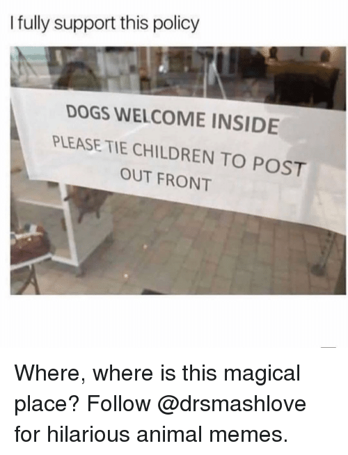 Children, Dogs, and Memes: I fully support this policy  DOGS WELCOME INSIDE  PLEASE TIE CHILDREN TO POST  OUT FRONT Where, where is this magical place? Follow @drsmashlove for hilarious animal memes.