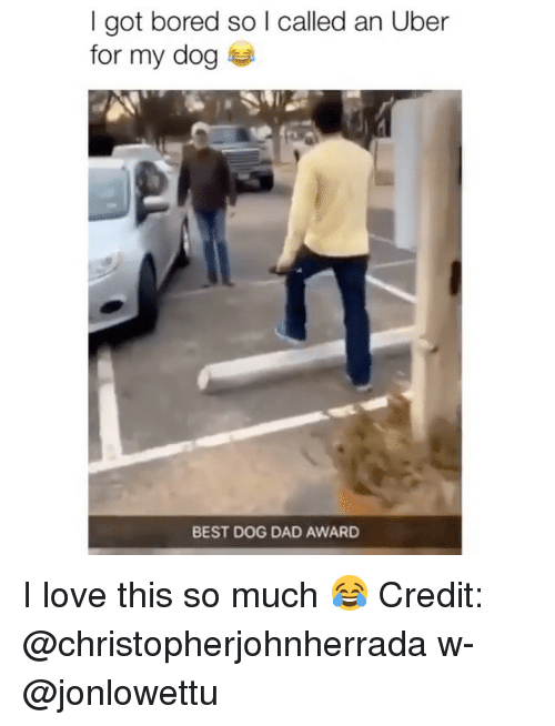 Bored, Dad, and Love: I got bored so l called an Uber  for my dog  BEST DOG DAD AWARD I love this so much 😂 Credit: @christopherjohnherrada w- @jonlowettu