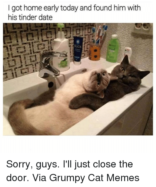 Memes, Sorry, and Tinder: I got home early today and found him with  his tinder date Sorry, guys. I'll just close the door. Via Grumpy Cat Memes