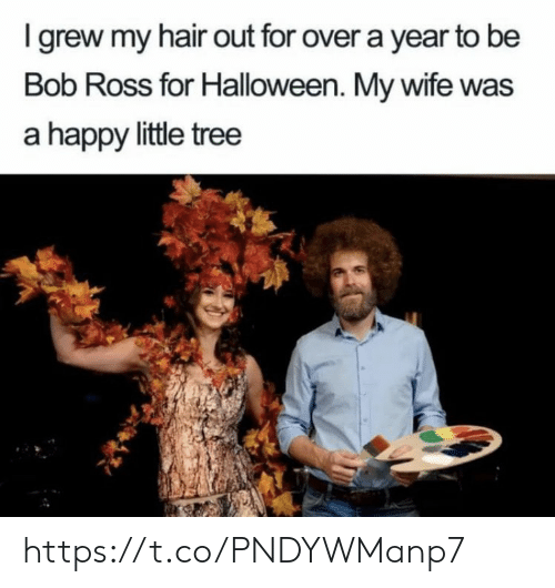 Halloween, Memes, and Bob Ross: I grew my hair out for over a year to be  Bob Ross for Halloween. My wife was  a happy little tree https://t.co/PNDYWManp7