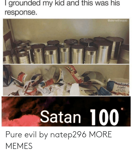 Satan: I grounded my kid and this was his  @alienwithnojob  response.  OאוS  Light  Nry Beef  Rarley Vgetahle  BU  Satan 100 Pure evil by natep296 MORE MEMES