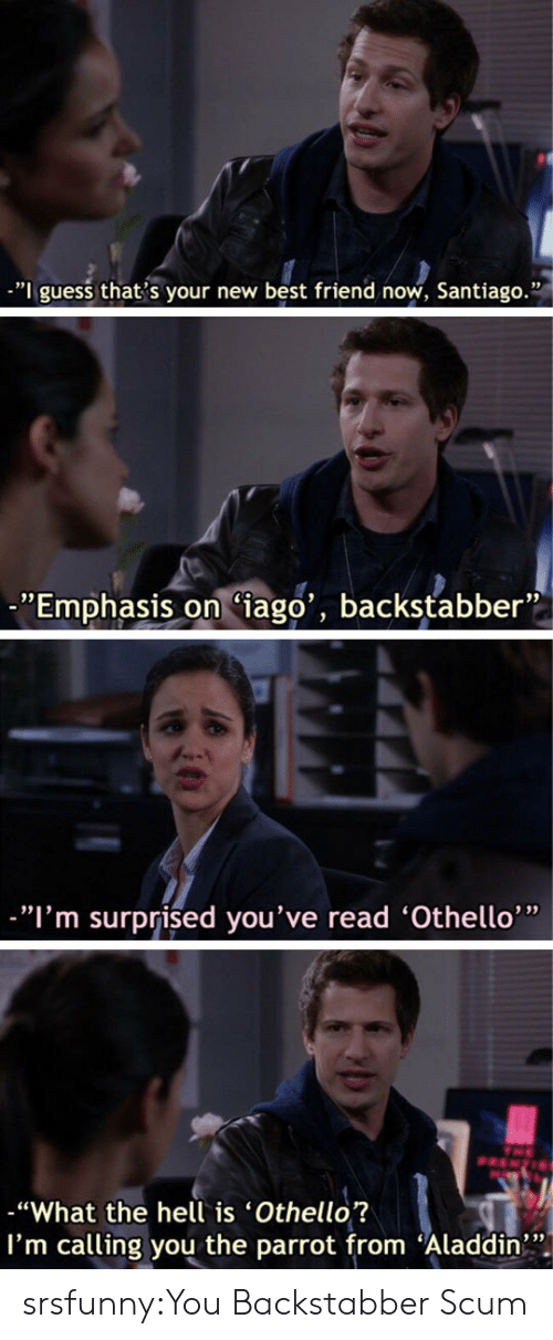 "Aladdin, Best Friend, and Tumblr: -""I guess that s your new best friend now, Santiago.""  ""Emphasis on Ciago', backstabber""  ""I'm surprised you've read 'Othello'""  ""What the hell is 'Othello?  I'm calling you the parrot from Aladdin srsfunny:You Backstabber Scum"