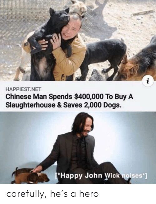 Dogs, John Wick, and Chinese: i  HAPPIEST.NET  Chinese Man Spends $400,000 To Buy A  Slaughterhouse & Saves 2,000 Dogs  *Happy John Wick noises'] carefully, he's a hero