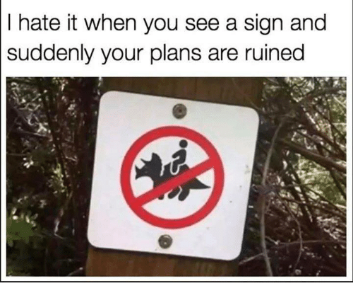 Humans of Tumblr, You, and Sign: I hate it when you see a sign and  suddenly your plans are ruined
