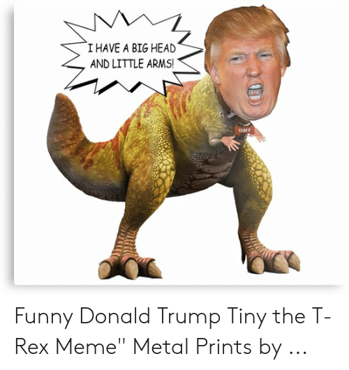 """T Rex Meme: I HAVE A BIG HEAD  AND LITTLE ARMS!  TINY Funny Donald Trump Tiny the T-Rex Meme"""" Metal Prints by ..."""