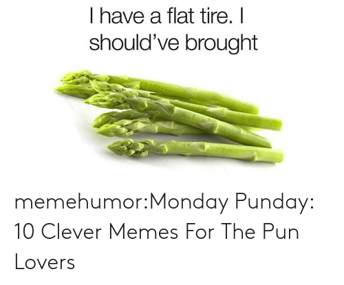 Memes, Tumblr, and Blog: I have a flat tire. I  should've brought memehumor:Monday Punday: 10 Clever Memes For The Pun Lovers