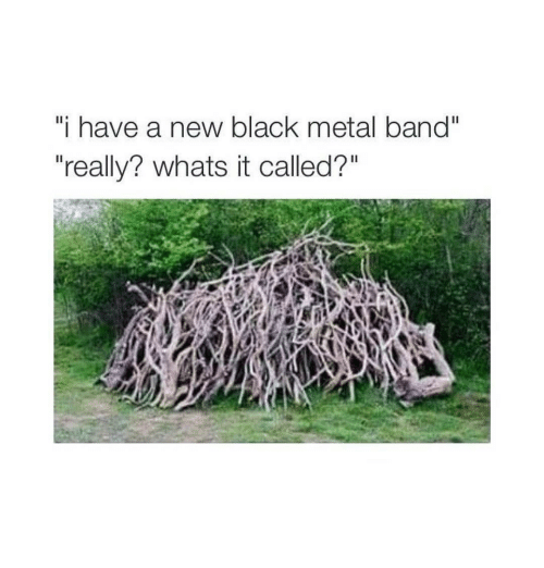 """Black, Dank Memes, and Metal: i have a new black metal band""""  """"really? whats it called?"""""""
