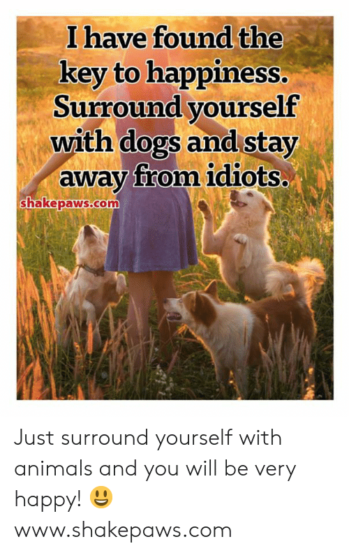 very happy: I have found the  key to happiness.  Surround yourself  with dogs and stay  away from idiots..  shakepaws.com Just surround yourself with animals and you will be very happy! 😃 www.shakepaws.com