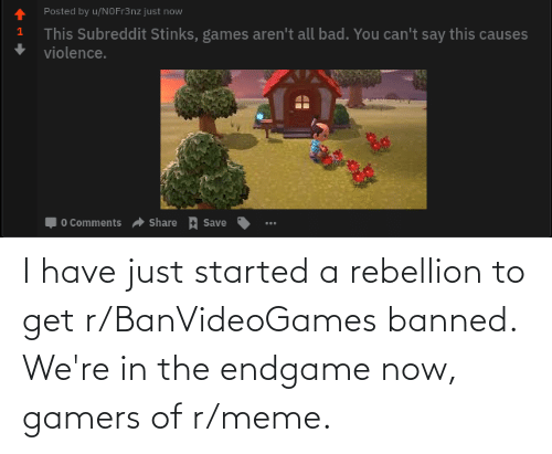 endgame: I have just started a rebellion to get r/BanVideoGames banned. We're in the endgame now, gamers of r/meme.