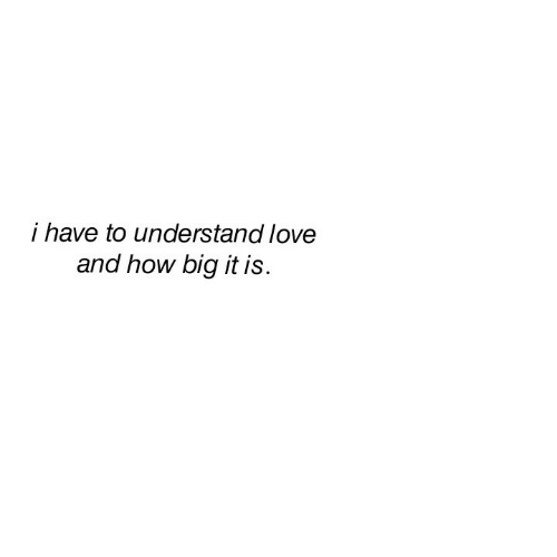 Love, How, and Big: i have to understand love  and how big it is.