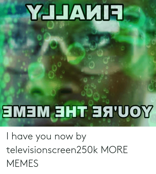 You Now: I have you now by televisionscreen250k MORE MEMES