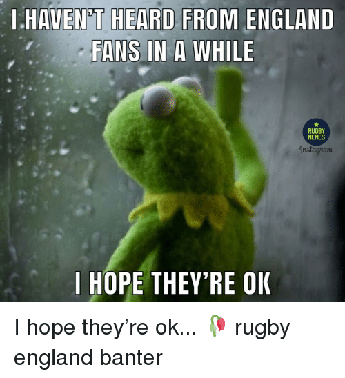 England, Memes, and Rugby: I HAVEN'T HEARD FROM ENGLAND  FANS IN A WHILE  MEMES  | HOPE THEY'RE OK I hope they're ok... 🥀 rugby england banter