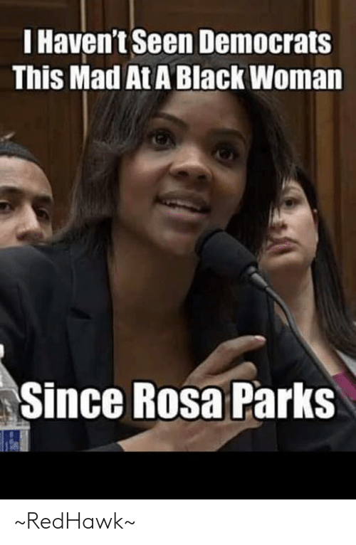 Memes, Rosa Parks, and Black: I Haven't Seen Democrats  This Mad At A Black Woman  Since Rosa Parks ~RedHawk~