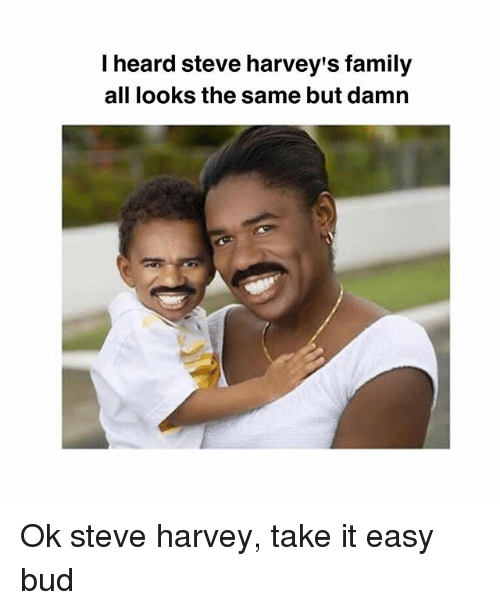 Family, Memes, and Steve Harvey: I heard steve harvey's family  all looks the same but damn Ok steve harvey, take it easy bud