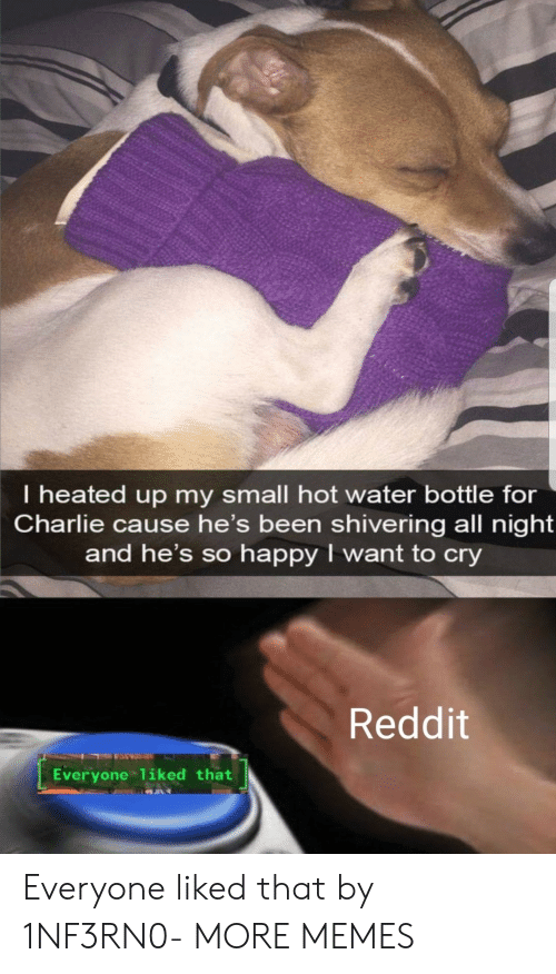 Charlie: I heated up my small hot water bottle for  Charlie cause he's been shivering all night  and he's so happy I want to cry  Reddit  Everyone 1iked that Everyone liked that by 1NF3RN0- MORE MEMES