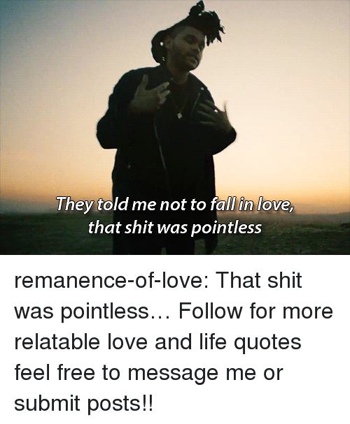 Life, Love, and Shit: I hey told me hot to rall in love  that shit was pointless remanence-of-love:  That shit was pointless…  Follow for more relatable love and life quotes     feel free to message me or submit posts!!