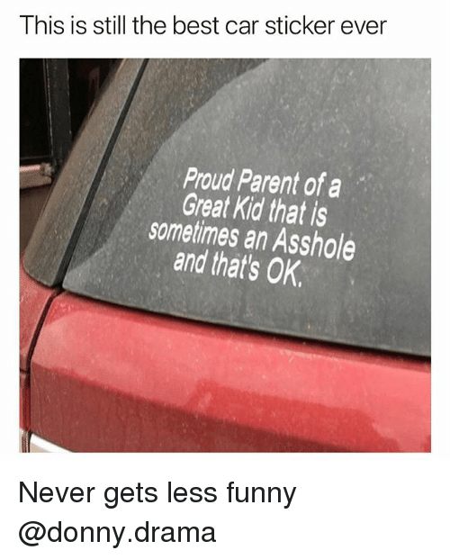 Funny, Meme, and Best: I his is still the best car sticker ever  Proud Parent of a  Great Kid that is  sometimes an Asshole  and that's OK Never gets less funny @donny.drama
