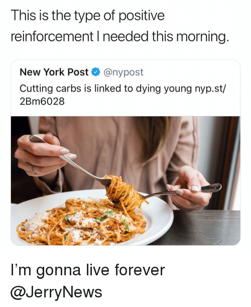 Funny, New York, and New York Post: I his is the type of positive  reinforcement I needed this morning  New York Post Q @nypost  Cutting carbs is linked to dying young nyp.st/  2Bm6028 I'm gonna live forever @JerryNews