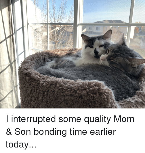 Time, Today, and Mom