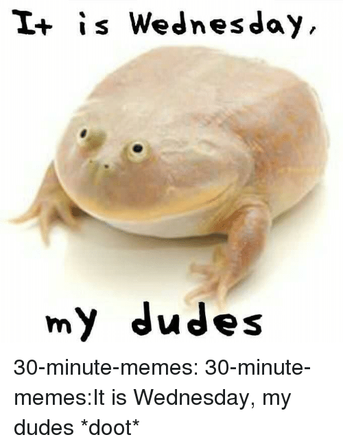 It Is Wednesday: I+ is Wednesday  my dudes 30-minute-memes:  30-minute-memes:It is Wednesday, my dudes *doot*