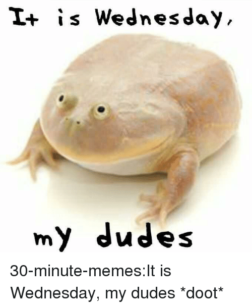 It Is Wednesday: I+ is Wednesday  my dudes 30-minute-memes:It is Wednesday, my dudes *doot*