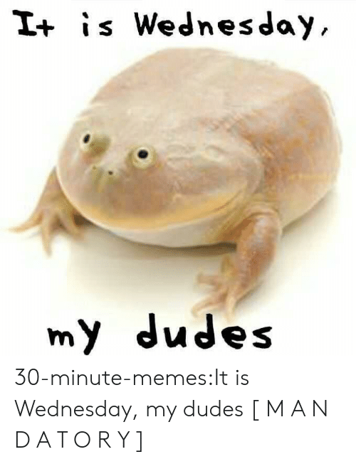 It Is Wednesday: I+ is Wednesday  my dudes 30-minute-memes:It is Wednesday, my dudes [ M A N D A T O R Y ]
