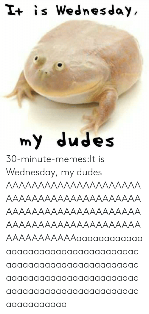 It Is Wednesday: I+ is Wednesday  my dudes 30-minute-memes:It is Wednesday, my dudes AAAAAAAAAAAAAAAAAAAAAAAAAAAAAAAAAAAAAAAAAAAAAAAAAAAAAAAAAAAAAAAAAAAAAAAAAAAAAAAAAAAAAAAAAAAAAAAaaaaaaaaaaaaaaaaaaaaaaaaaaaaaaaaaaaaaaaaaaaaaaaaaaaaaaaaaaaaaaaaaaaaaaaaaaaaaaaaaaaaaaaaaaaaaaaaaaaaaaaaaaaaaaaaaaaaaaa