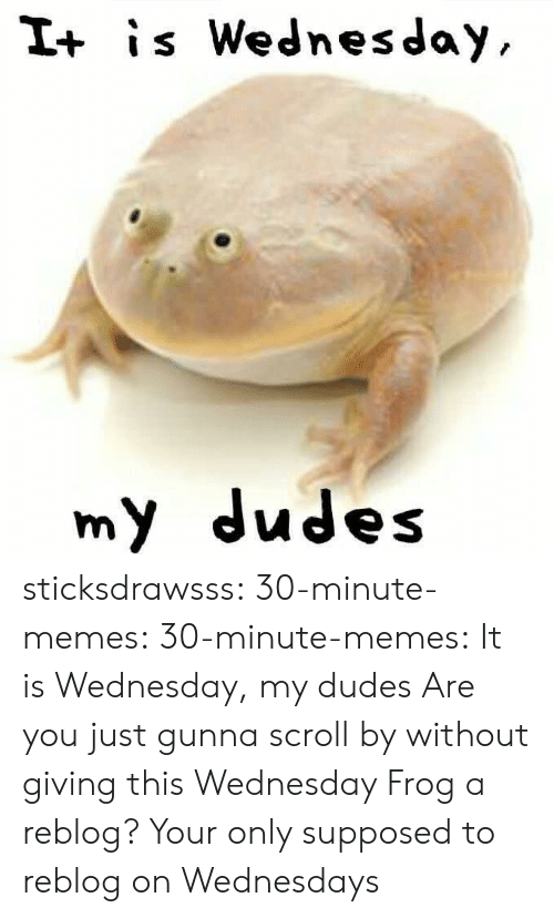 It Is Wednesday: I+ is Wednesday  my dudes sticksdrawsss: 30-minute-memes:   30-minute-memes: It is Wednesday, my dudes  Are you just gunna scroll by without giving this Wednesday Frog a reblog?   Your only supposed to reblog on Wednesdays