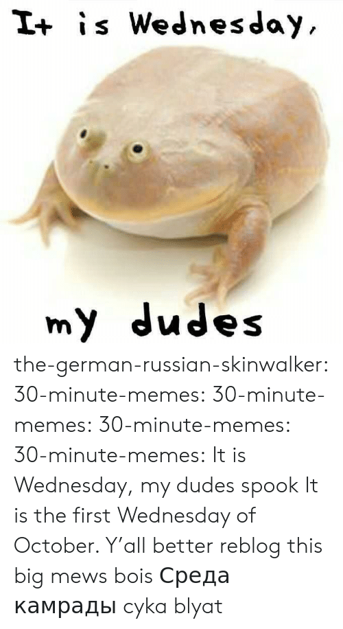 It Is Wednesday: I+ is Wednesday  my dudes the-german-russian-skinwalker: 30-minute-memes:   30-minute-memes:  30-minute-memes:  30-minute-memes: It is Wednesday, my dudes spook  It is the first Wednesday of October. Y'all better reblog this   big mews bois   Среда камрады  cyka blyat