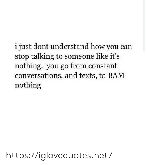 Texts, How, and Net: i just dont understand how you can  stop talking to someone like it's  nothing. you go from constant  conversations, and texts, to BAM  nothing https://iglovequotes.net/