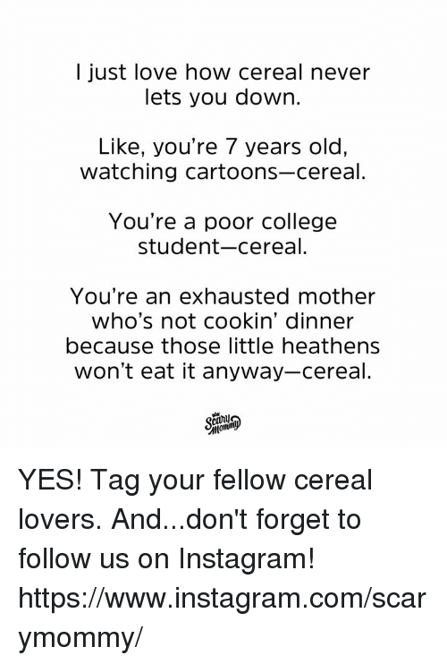 College, Dank, and Instagram: I just love how cereal never  lets you down.  Like, you're 7 years old,  watching cartoons-cereal.  You're a poor college  student-cereal.  You're an exhausted mother  who's not cookin' dinner  because those little heathens  won't eat it anyway-cereal. YES! Tag your fellow cereal lovers.   And...don't forget to follow us on Instagram! https://www.instagram.com/scarymommy/