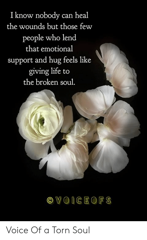 Life, Memes, and Voice: I know nobody can heal  the wounds but those few  people who lend  that emotional  support and hug feels like  giving life to  the broken soul.  VOICEOFS Voice Of a Torn Soul