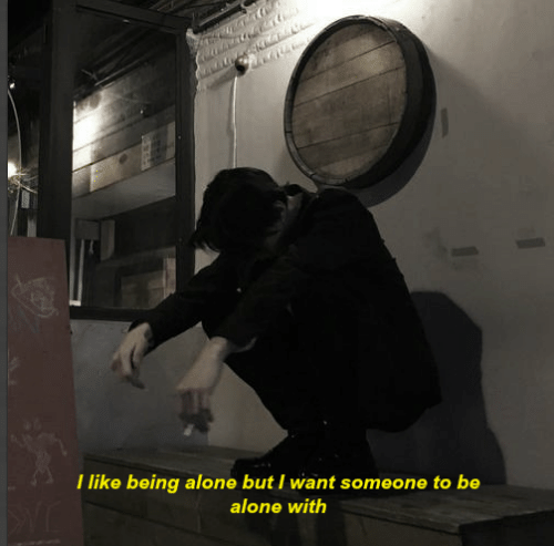 Being Alone, Like, and I Like Being Alone: I like being alone but I want someone to be  alone with