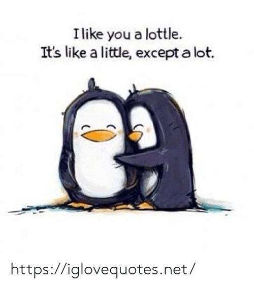 Net, You, and Href: I like you a lottle.  It's like a little, except a lot. https://iglovequotes.net/