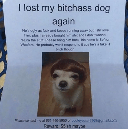 Bitch, Fake, and Love: I lost my bitchass dog  again  He's ugly as fuck and keeps running away but I still love  him, plus I already bought him shit and I don't wanna  return the stuff. Please bring him back, his name is Señior  Woofers. He probably won't respond to it cus he's a fake lil  bitch though.  Please contact me at 661-440-5950 or booteyeater6969@amail.com  Reward: $5ish maybe