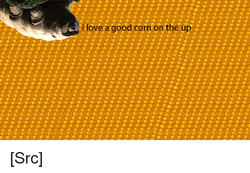 Love, Reddit, and Good: i love a good corn on the up [Src]