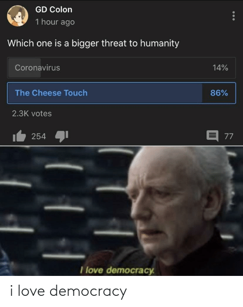 Democracy: i love democracy
