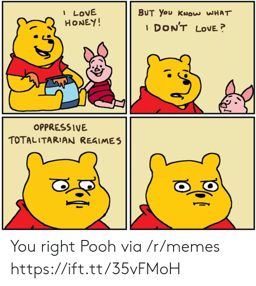 Love, Memes, and Honey: I LOVE  HONEY!  BUT You KNOW WHAT  DON'T  LOVE  1  OPPRESSIVE  TOTALITARIAN REGIMES You right Pooh via /r/memes https://ift.tt/35vFMoH