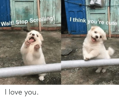 Love, I Love You, and You: I love you.
