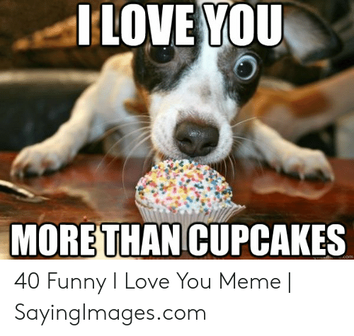 Funny, Love, and Meme: I LOVE YOU  MORETHAN CUPCAKES  com 40 Funny I Love You Meme | SayingImages.com