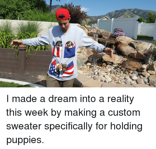 A Dream, Puppies, and Reality