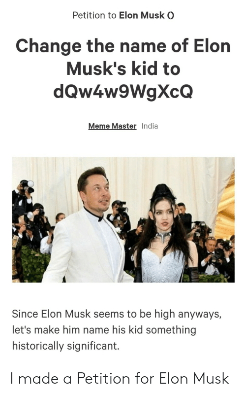 I Made: I made a Petition for Elon Musk