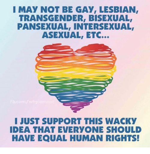 Asexual: I MAY NOT BE GAY, LESBIAN,  TRANSGENDER, BISEXUAL  PANSEXUAL, INTERSEXUAL  ASEXUAL, ETC.  I JUST SUPPORT THIS WACKY  IDEA THAT EVERYONE SHOULD  HAVE EQUAL HUMAN RIGHTS!